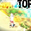 Top 5 Zaubertrüffel Für Einsteiger