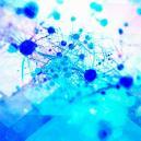 Psilocybin fördert das Wachstum neuer Gehirnzellen