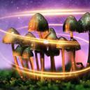 Wie Magic Mushrooms ursprünglich zu ihrer Magie kamen