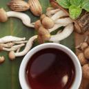Wie Man Ganz Einfach Einen Zauberpilz-Tee Zubereitet