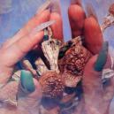 Wer Ist Terence McKenna: Ein Pionier Der Psychedelika Und Gegenkultur
